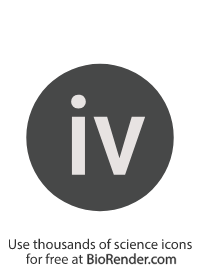 "a round, alphanumeric label with the roman numeral for one, ""iv"""
