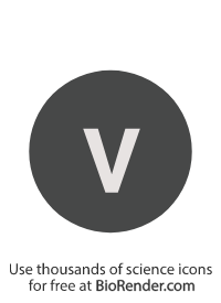 "a round, alphanumeric label with the roman numeral for one, ""v"""