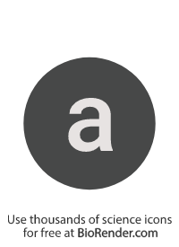 "a round, alphanumeric label with the lowercase alphabet ""a"""
