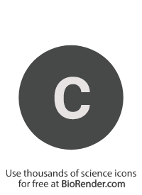 "a round, alphanumeric label with the lowercase alphabet ""c"""
