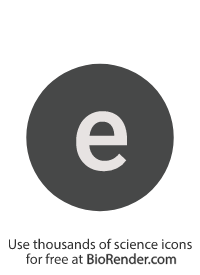 "a round, alphanumeric label with the lowercase alphabet ""e"""