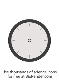 an icon of a round clock face with no hands