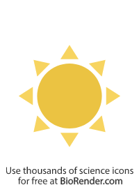 a simplified sun with round core and 8 triangular rays