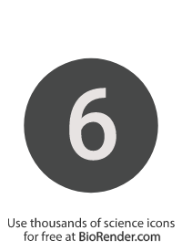 a round, alphanumeric label with the number 6