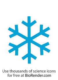 a simplified hexagonal snowflake with six branches and further branched ends
