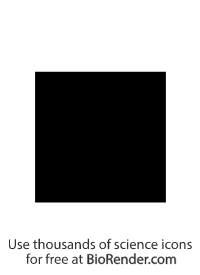 a pedigree symbol of a filled square representing an affected male
