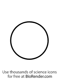 a pedigree symbol of an unfilled circle representing an unaffected female
