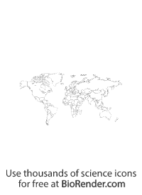 an unfilled world map showing inidividual countries