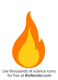 a symbol of a fire with inner and outer flame