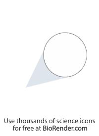 Zoomed callout (circle, shaded tail, long)