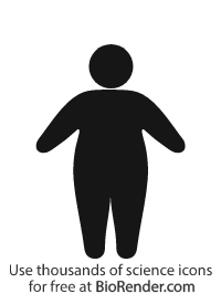 People Icon (adult standing, obese)