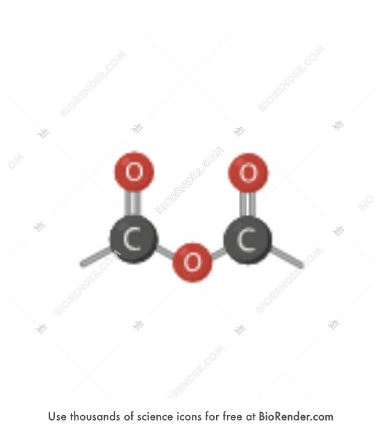 BioRender | Functional group (acid anhydride)